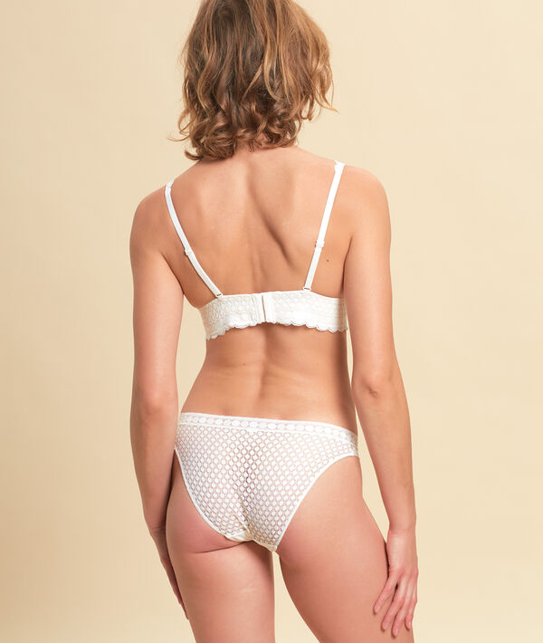 Microfiber and lace briefs;${refinementColor}